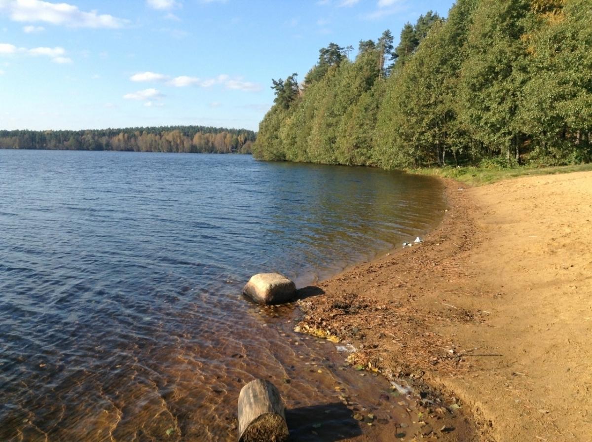 озеро рощинское приозерский район рыбалка
